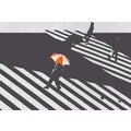 URBAN JUNGLE Wall Art Wandsticker Zebra Crossing