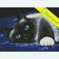Seam Beauty - Diamond Painting pakket - Diamond Art Pakket met vierkante diamantjes