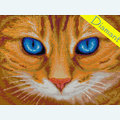 Blue-Eyed Cat - Diamond Painting pakket - Diamond Art Pakket met vierkante diamantjes