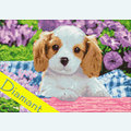 Dog in Purple Flowers - Diamond Painting pakket - Wizardi Pakket met vierkante diamantjes