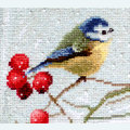 Blue Tits - borduurpakket met telpatroon Letistitch
