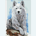 Grey Wanderer - Diamond Painting pakket - Wizardi