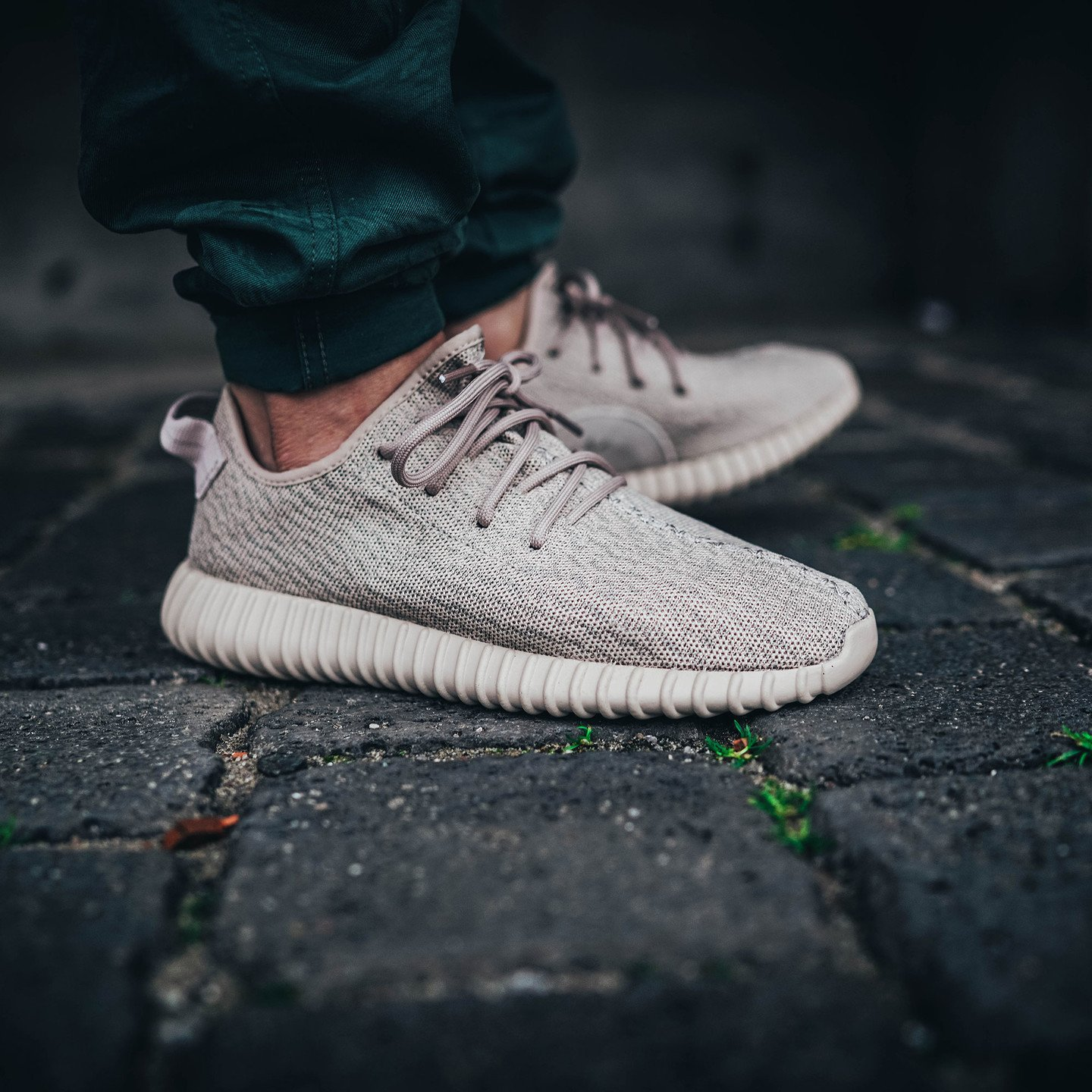 Adidas Yeezy Boost 350 Light Stone / Oxford Tan AQ2661