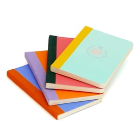 Smartbook Notizbuch klein / Notebook small | Mint | Artikelnummer: flex_s_m