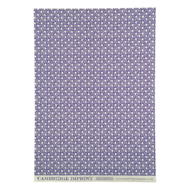 Blaue Tierchen Geschenkpapier / Blue Animacule Wrapping Paper | Buntpapier 50 x 70cm / Patterned Paper | Artikelnummer: cambridge-papier-animacule