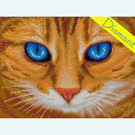 Blue-Eyed Cat - Diamond Painting pakket - Diamond Art | Pakket met vierkante diamantjes | Artikelnummer: da-az-1716