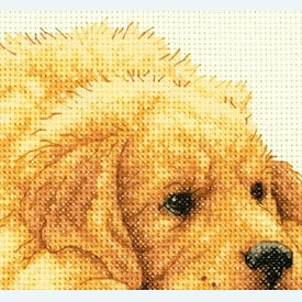 Golden Retriever Puppies - borduurpakket met telpatroon Dimensions |  | Artikelnummer: dim-70-35309