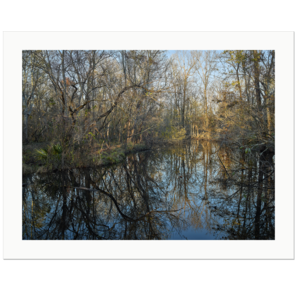 Atchafalaya Swamp Sunset | Atchafalaya National Wildlife Refuge, Whiskey Bay Exit I-10, Louisiana, 2017 | Edition Print 24   unlimitiert | Bildnummer: IQ180_171209_003-24