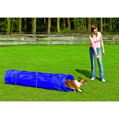 Agilitytunnel Hunde Fun Agility Trainingstunnel Katzentunnel 40 x 40 x 198 cm Nylon Indoor Outdoor |  | Artikelnummer: 4016598318508