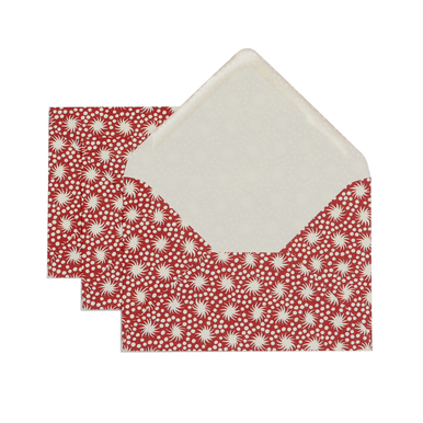 Kuverts Rotes Tierchen C6 / Envelopes red animacule | 1 Set à 3 Kuverts / Pack of 3 envelopes | Artikelnummer: cambridge_kuvert_animaculered