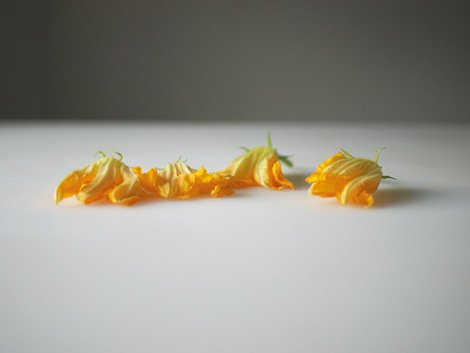 One dollar's worth of local squash blossoms, 2010 | Edition 15+2 AP, Serie: