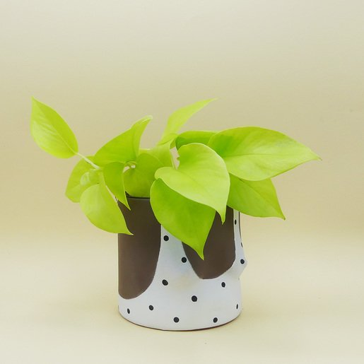 Boop Pot von Group Partner kaufen - The Botanical Room