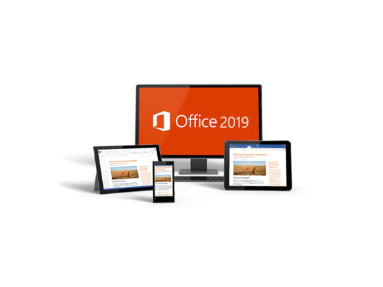 Microsoft OFFICE 2019 Professional Plus | 32/64-bit OEM Produktschlüssel Key Download | Artikelnummer: MS0019