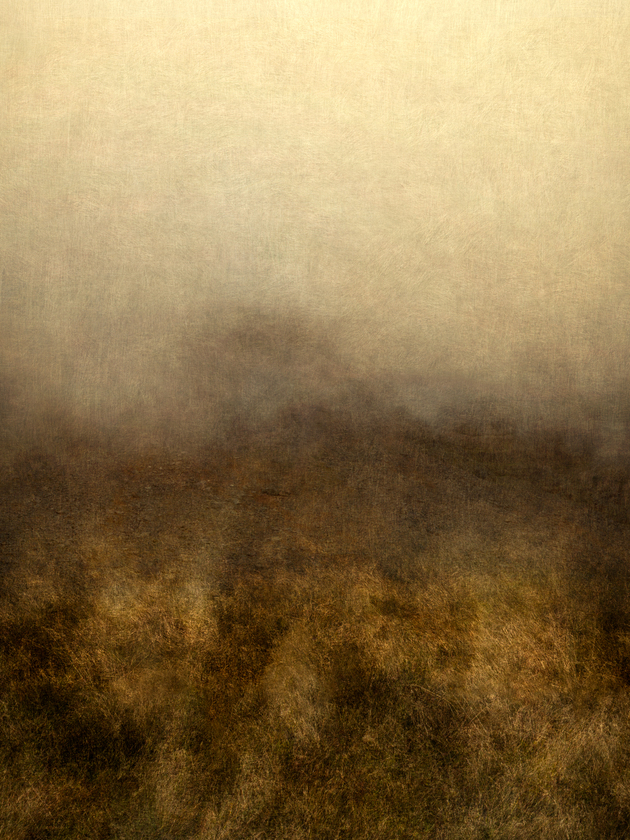 Fog in the Field, 2014 | Edition 4 + 2 APs, Serie